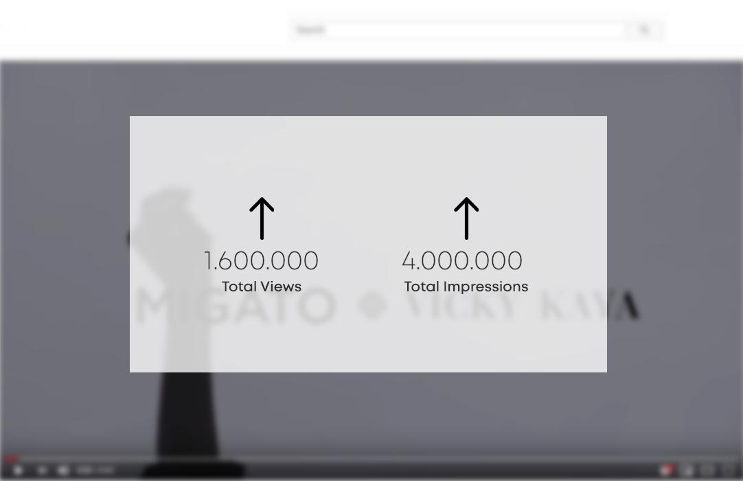 Google Video Campaign